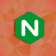 Learn how to analyze and troubleshoot your NGINX server in minutes, using NGINX logs