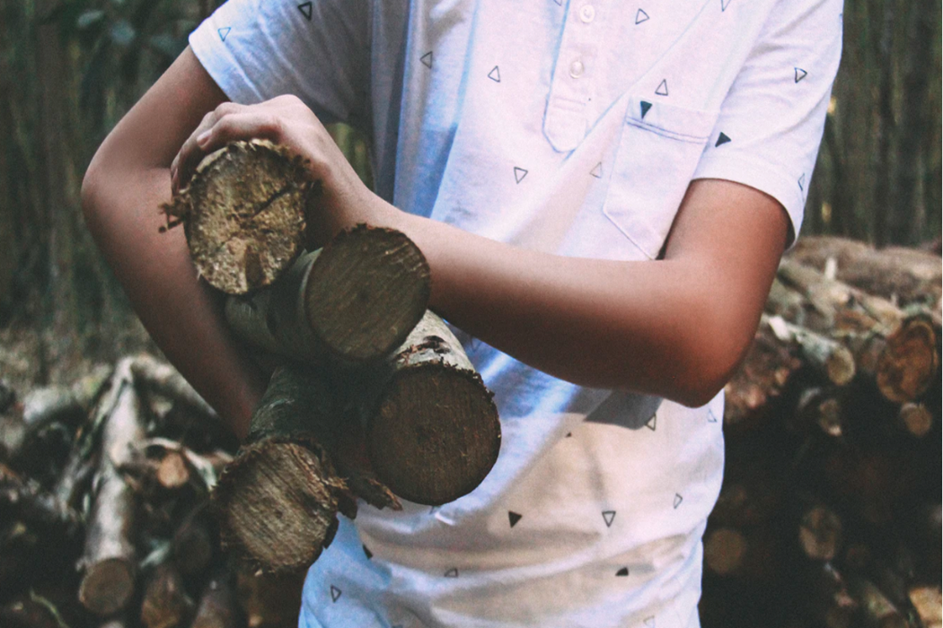 person carrying logs